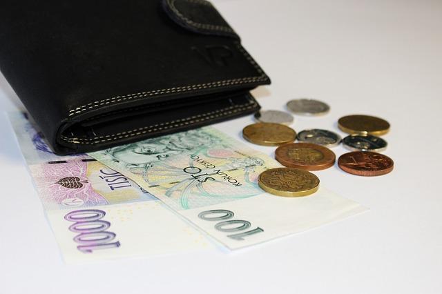 pěníze u peněženky