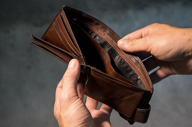 peněženka bez peněz.jpg