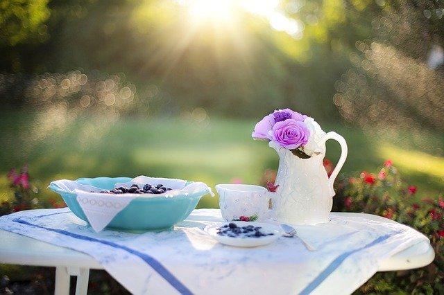 borůvková snídaně
